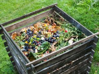kompostikast