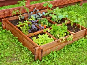 Raised bed 9-section