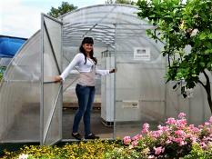 Greenhouses 4 m PROFI