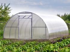Polükarbonaat kasvuhooned
