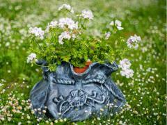 Lillepotid BAG