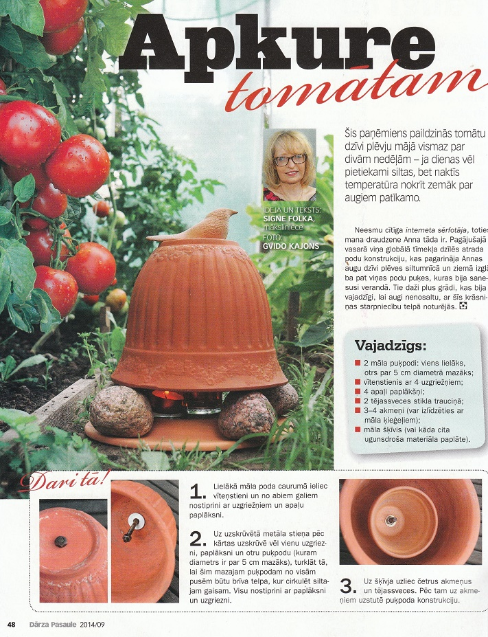 Apkure-tomatam-siltumnicas-siltinasana